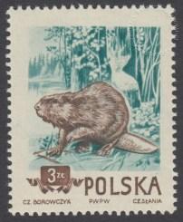 Zwierzęta chronione - 746B