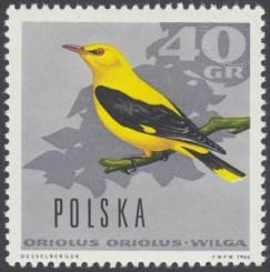 Ptaki leśne - 1573