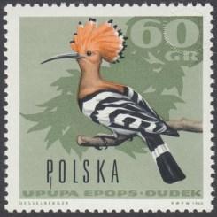 Ptaki leśne - 1574