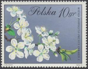 Kwiaty drzew - 1985