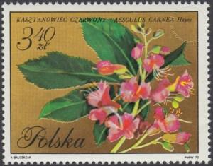 Kwiaty drzew - 1992