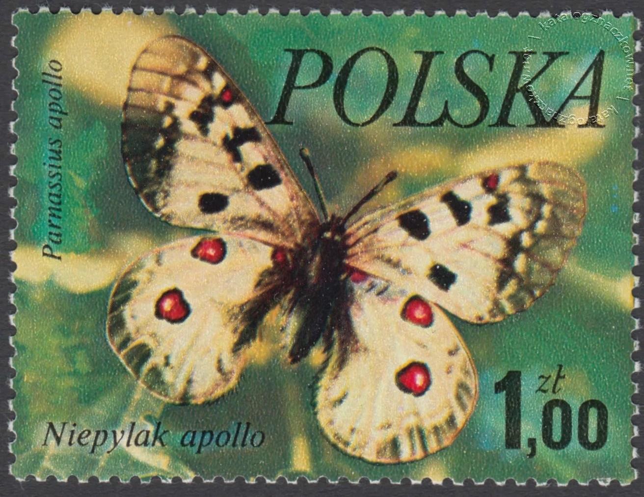 Motyle znaczek nr 2369