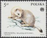 Chronione zwierzęta futerkowe - 2800