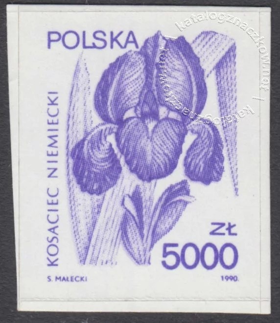Rośliny lecznicze znaczek nr 3130
