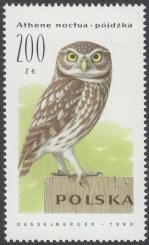 Sowy - 3146