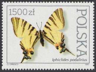 Motyle z kolekcji Instytutu Zoologii PAN w Warszawie - 3198