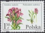 Chronione i zagrożone gatunki flory polskiej - 4082