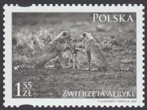 Zwierzęta Afryki - 4271