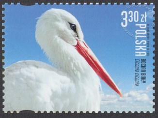 Polskie ptaki - 5112