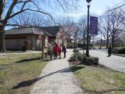 Cherry Blossom Center, Newark