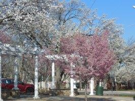 Livingston tavasszal