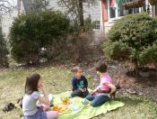 Imádunk piknikezni