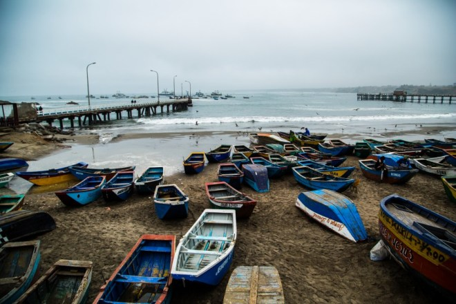 fish boats edited