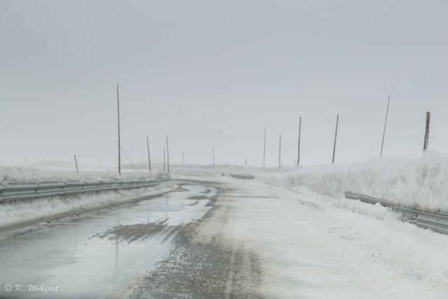 roadtrip bergen norway-22