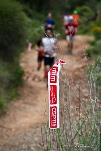 Penyagolosa trail (295)