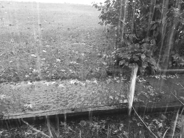 bw-rain