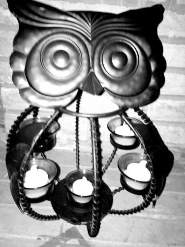 bw owl2