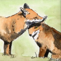 fox-couple-3