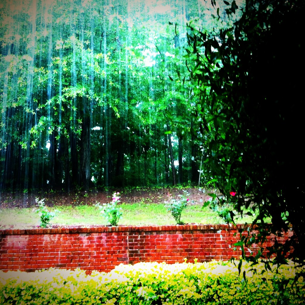 Umbrellas and Grace