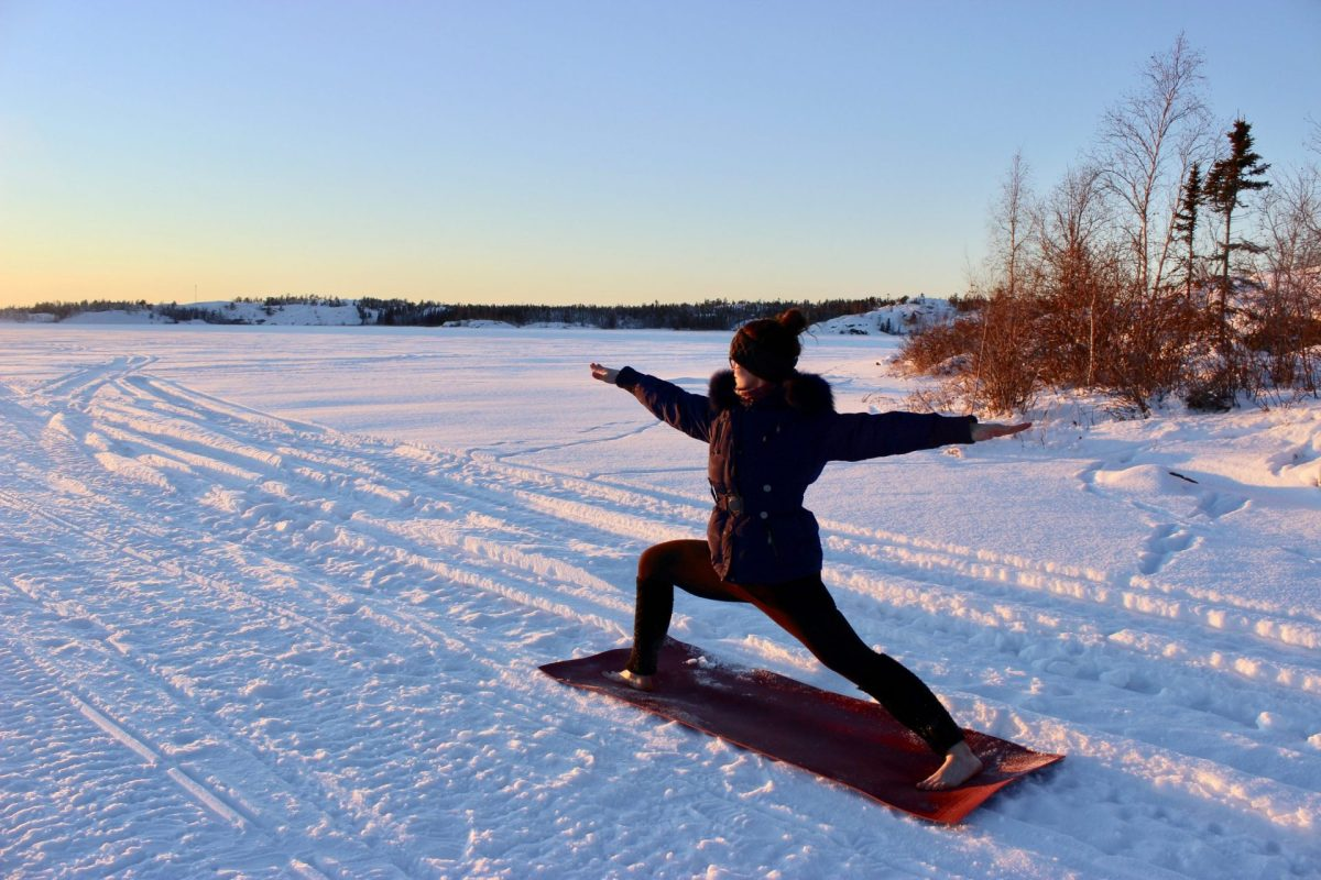 Warrior Two On Ice, yoga teacher training, virtual yoga studio