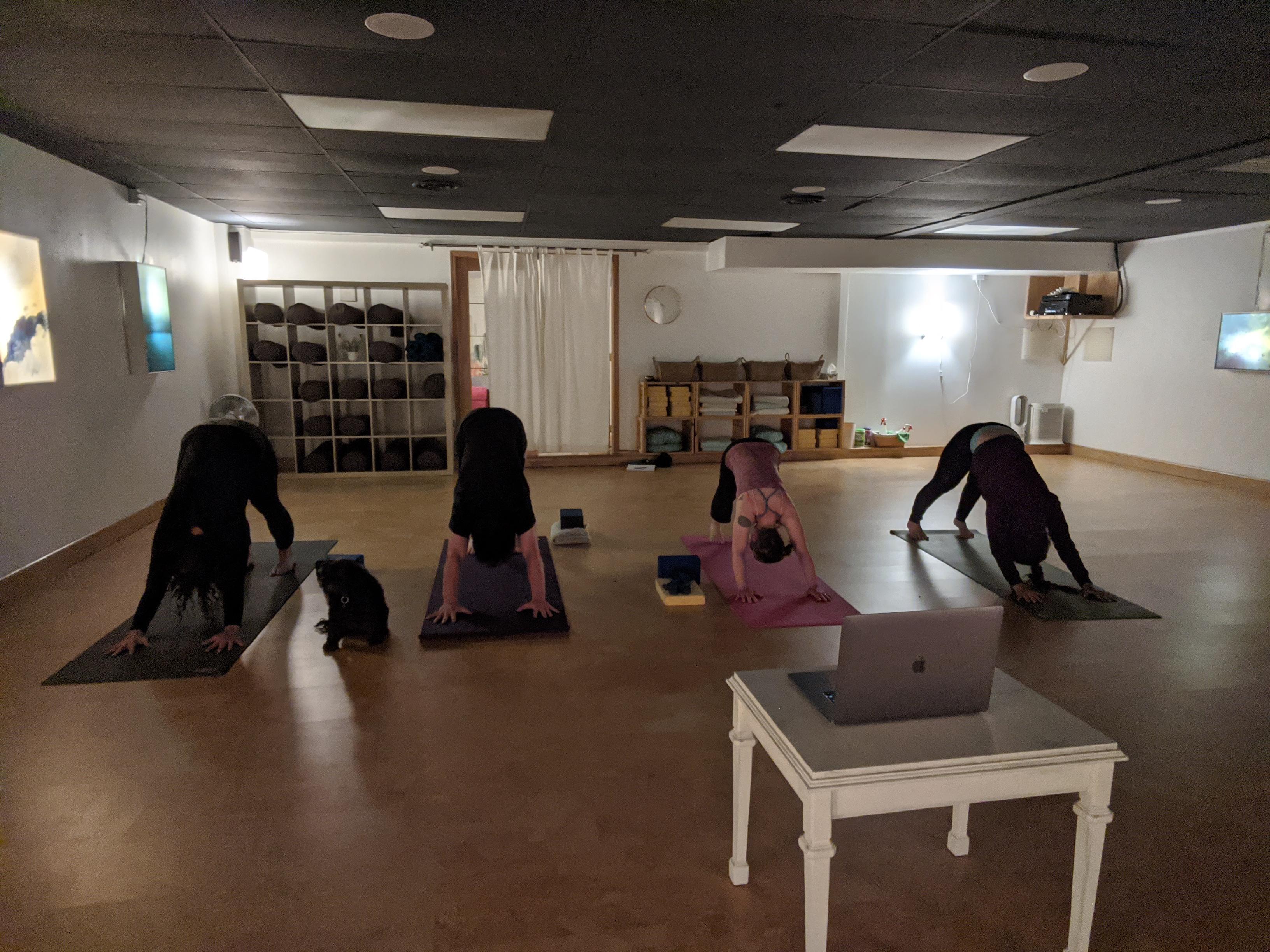 virtual and in person Yellowknife Yoga Teacher Training