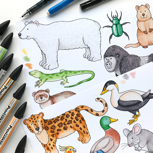 Animal sketchbook doodles by Kate Hadfield