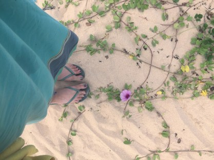 Pretty sand flowers