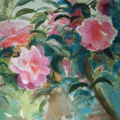 2017 art painting watercolor flowers by Kate Kos - Camellia