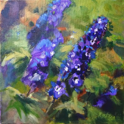 Malahide Delphiniums - available