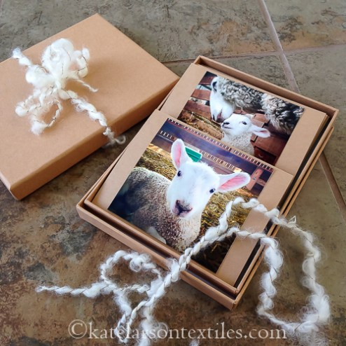Sheepy Greeting Cards Gift Set. Includes 5 or 10 cards with envelopes in a gift box tied with handspun wool from the flock.