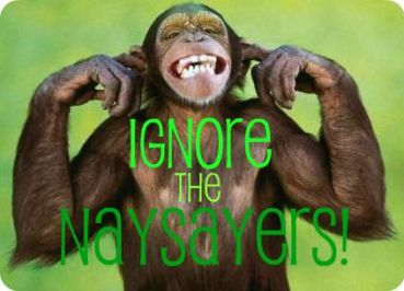 Ignore-the-Naysayers