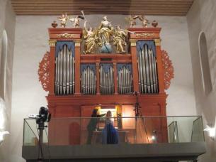 Ingelheim Dreymann organ