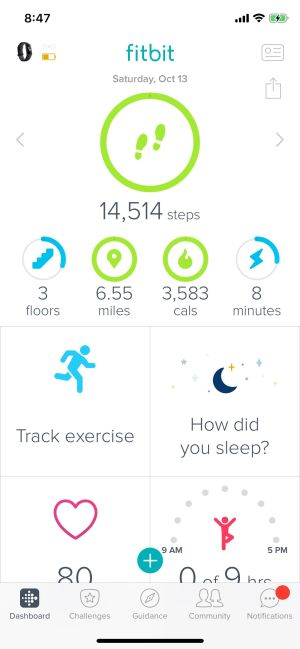 The Best Secrets To Getting Fit As A Family With Fitbit