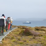 Auckland Islands, kate mccombie, photographer, melbourne, sub-antarctic