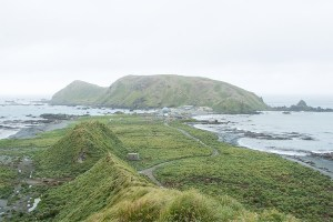 kate mccombie, photographer, melbourne, sub-antarctic, Macquarie Island