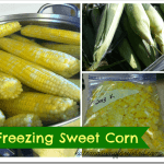 Freezing-Sweet-Corn_thumb.png