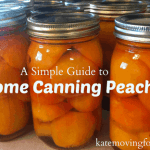 a-simple-guide-to-home-canning-peaches_thumb.png