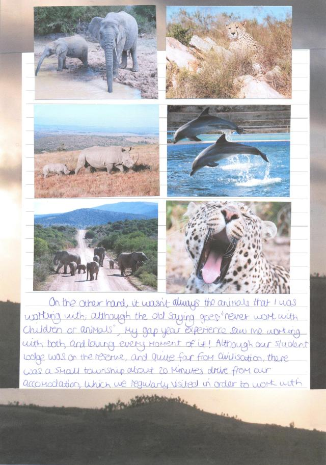Shamwari Report page 6