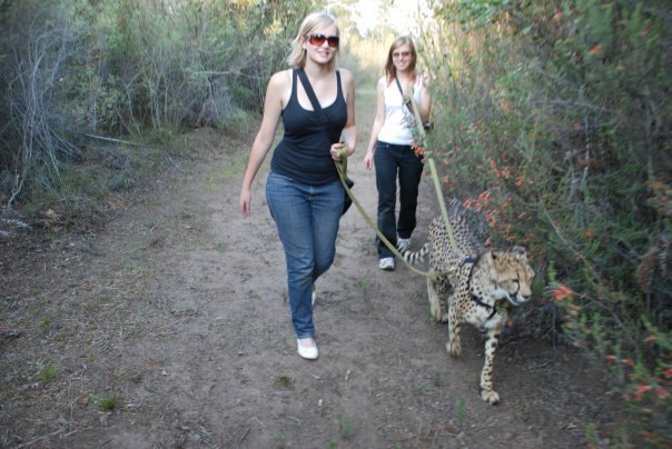 Conservation vs. Tourism