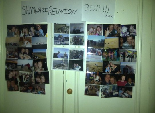 Shamwari Reunion