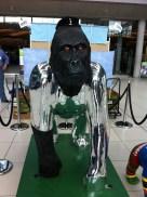 Go Go Gorilla Chromilla - Norwich