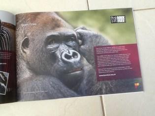Born Free gorilla mag