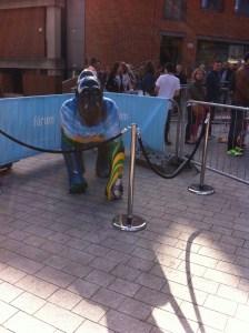 Go Go Gorilla Nelson - Norwich