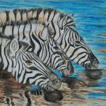 Zebra art by Kate on Conservation