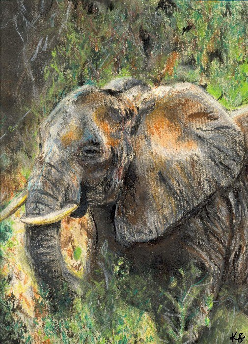 World of Wildlife Art Exhibition: In support of elephants