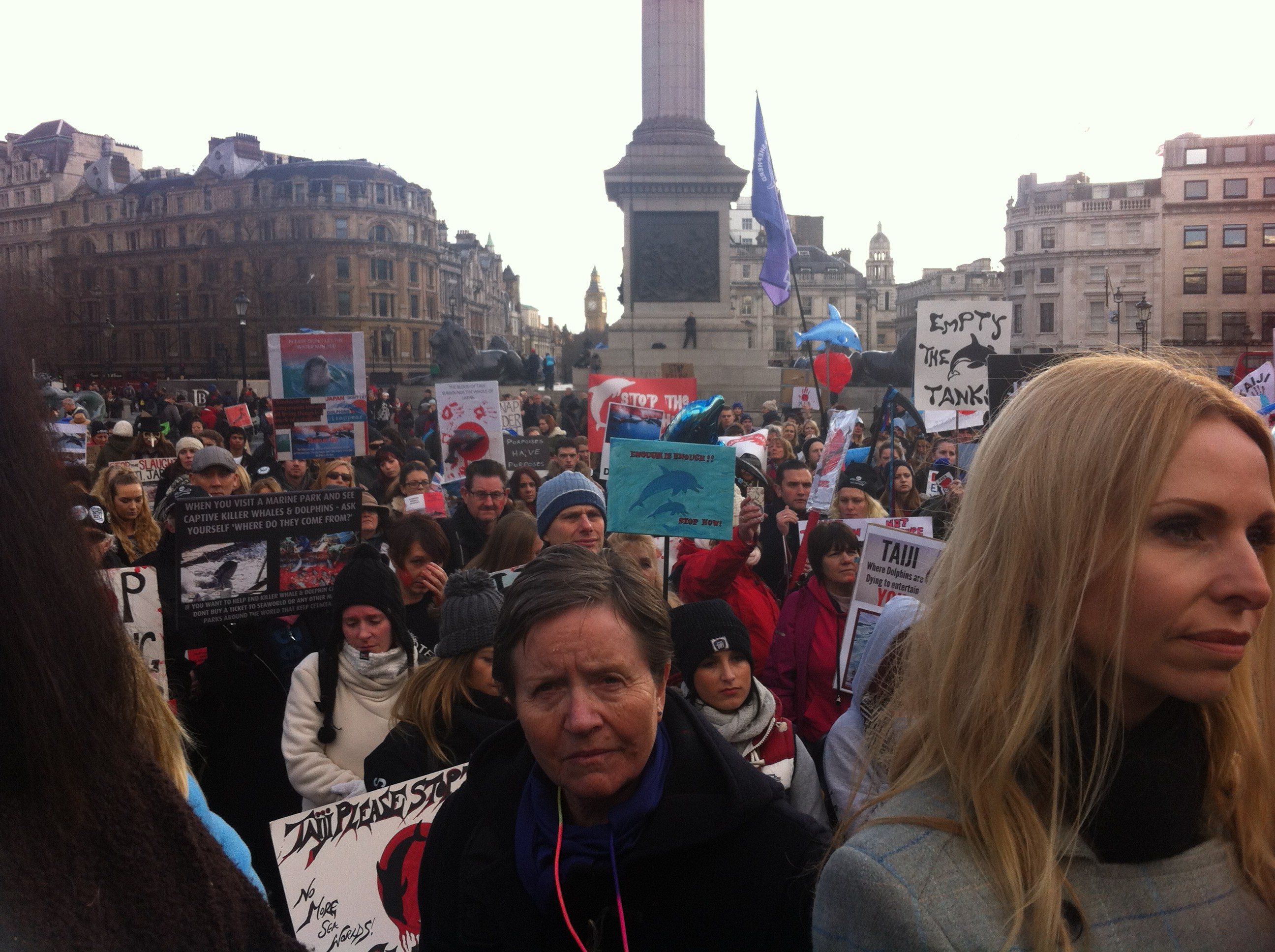 Anneka Svenska, dolphin march, London