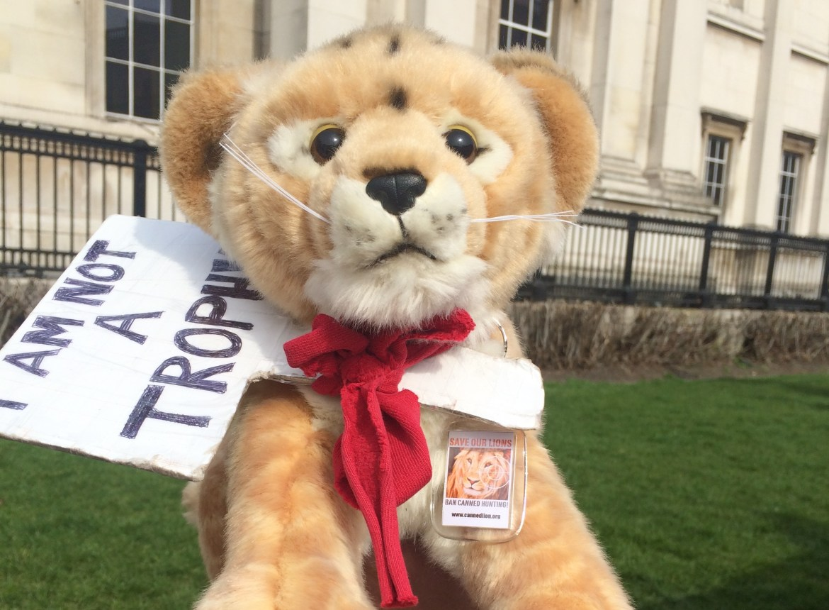 Lion toy - save our lions