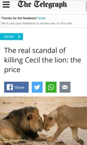 Celcil the lion scandal