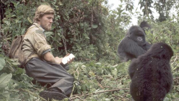 Revisiting Sir David Attenborough's Great Ape playmate