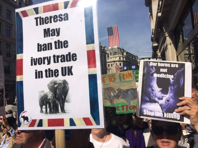 global-march-for-elephants-and-rhinos-2